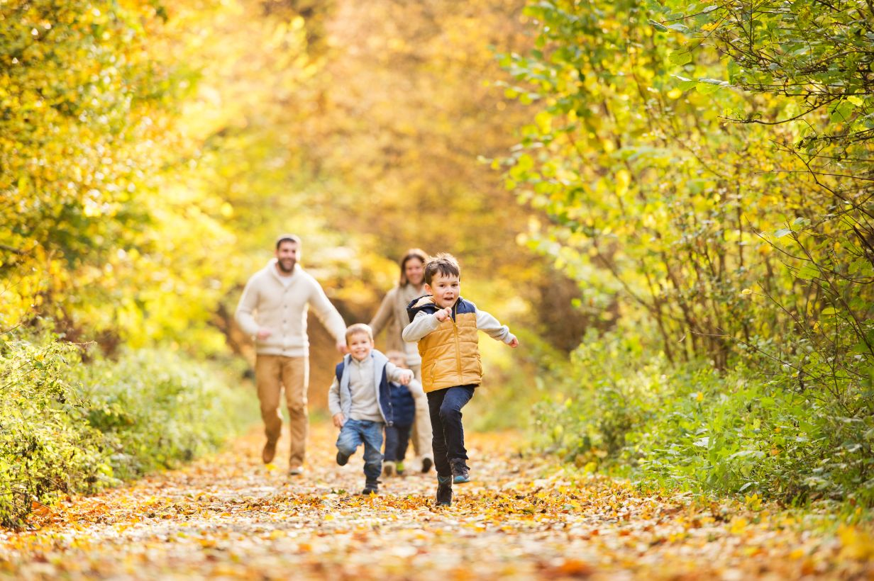 Une famille en promenade en forêt