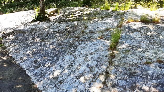 les pierres plates à Bagnoles de l'orne